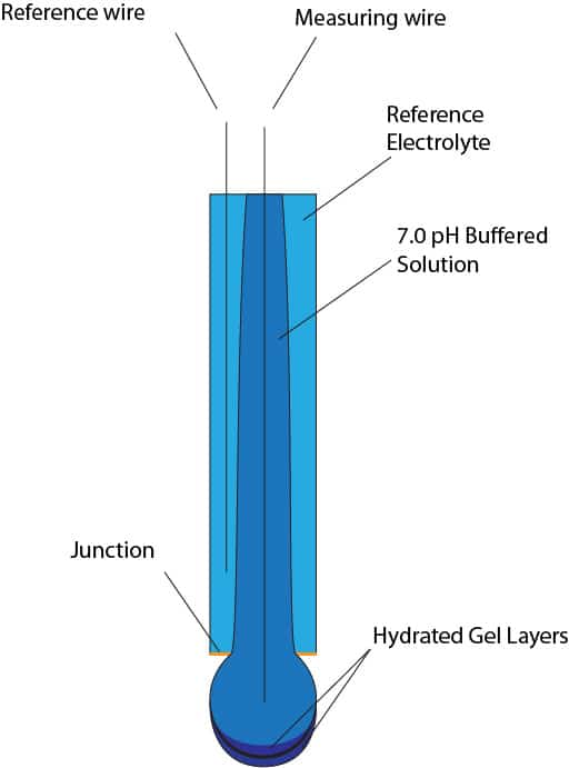 Labeled pH Electrode anatomy